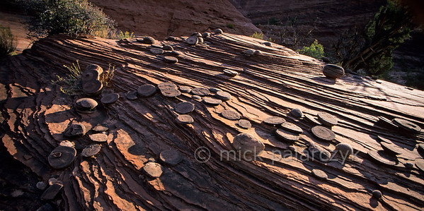 [USA.UTAH 28060] 'Sandstone disks in Paria Canyon.'  The Paria river (a tributary of the Colorado) is surrounded by a landscape of finely layered sandstone. On the bedrock surface many stone balls can be found: globular concretions which have been eroded out of the encasing sandstone. When these balls themselves are degraded by erosion they fall apart in disks. Photo Mick Palarczyk.