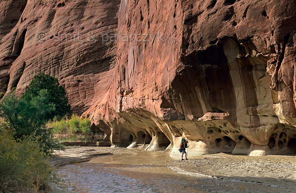 [USA.UTAH 28050] 'Overhanging canyon cliff.'  	The base of this sandstone wall in the Paria Canyon has been undercut during floods by swirling water and hard stones transported from upstream. The canyon of the Paria (a tributary of the Colorado) can be found east of Kanab and south of route 89. Photo Paul Smit & Mick Palarczyk.