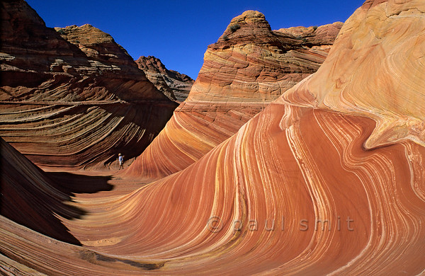 [USA.ARIZONA 27981] 'The Wave.'  	Locally called 'The Wave', this geological wonder in the Vermilion Cliffs Wilderness consists of 200 million years old fossilized sand dunes. The local geological formation is called Navajo Sandstone and is composed primarily of wind-blown sand from a vast ancient desert. However the undulating surface seen here is not so old but is the result of more recent erosion of the sandstone. Photo Paul Smit.
