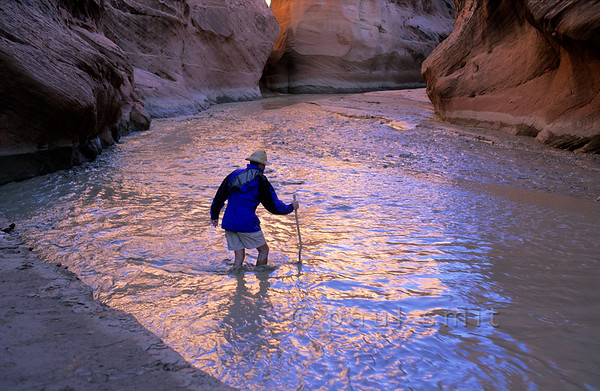 [USA.UTAH 28082] 'Crossing the Paria.'  A trek through the colourful Paria Canyon involves crossing the water every hundred meters. Using a stick can help you to avoid quicksand. The canyon of the Paria (a tributary of the Colorado) can be found east of Kanab and south of route 89. Photo Paul Smit.