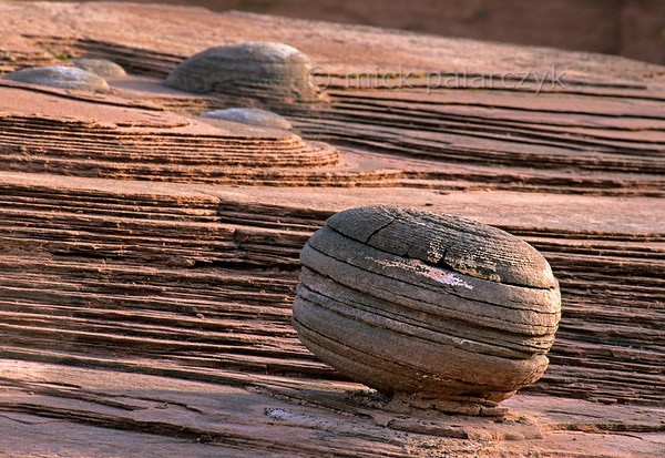 [USA.UTAH 28061] 'Rock and roll.'  	Balls of layered sandstone are eroding out of the bedrock surface in the canyon of the Paria (a tributary of the Colorado.) They may be of micro-organic origin, dating from the Jurassic era. Photo Mick Palarczyk.