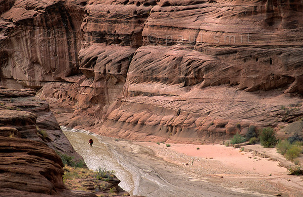 [USA.UTAH 28062] 'Hiking through the Paria Canyon.'  	Entering the Paria Canyon is entering the wilderness. No trail, no camp sites, no drinking water. You have to carry everything on your back. The canyon of the Paria (a tributary of the Colorado) can be found east of Kanab and south of route 89. Photo Paul Smit