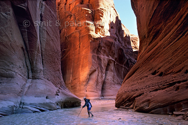 [USA.UTAH 28085] 'Paria Canyon.'  	A trek through the colourful Paria Canyon involves crossing the water every hundred meters. Using a stick can help you to avoid quicksand. The canyon of the Paria (a tributary of the Colorado) can be found east of Kanab and south of route 89. Photo Mick Palarczyk & Paul Smit.