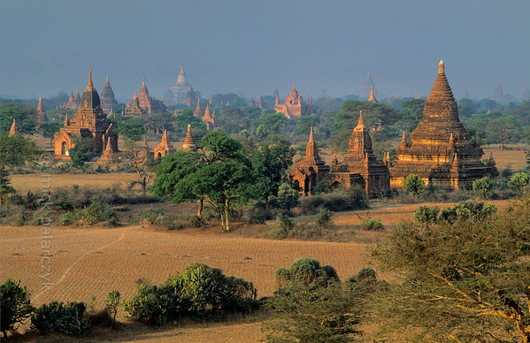 [BURMA 24.872] 'Bagan plain seen from Bulethi Stupa.'  	The Bagan plain houses some two thousand temples and stupas. They are the 11th-13th century remnants of the now vanished royal city of Bagan. Here the plain is seen in the early morning from the Bulethi Stupa, looking south-west, with on the horizon the white Shwesandaw Stupa. Photo Mick Palarczyk.