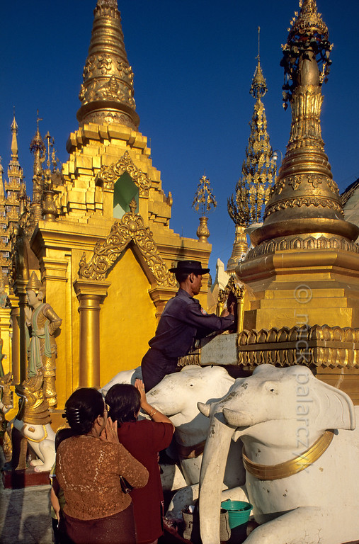 [BURMA 24.682] 'Donating gold leaves.'  	As a worshipping family has donated some gold-leaves to Yangon's Shwedagon Pagoda, a temple guard is sticking the gold on a little Buddha statue that is hidden in a niche of a small stupa. Photo Mick Palarczyk.