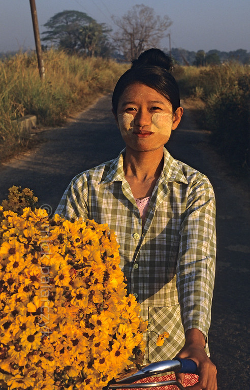 [BURMA 24.745] 'Carrying flowers.'  	North of Taungoo a woman is on her way to sell flowers at the market. Photo Mick Palarczyk.