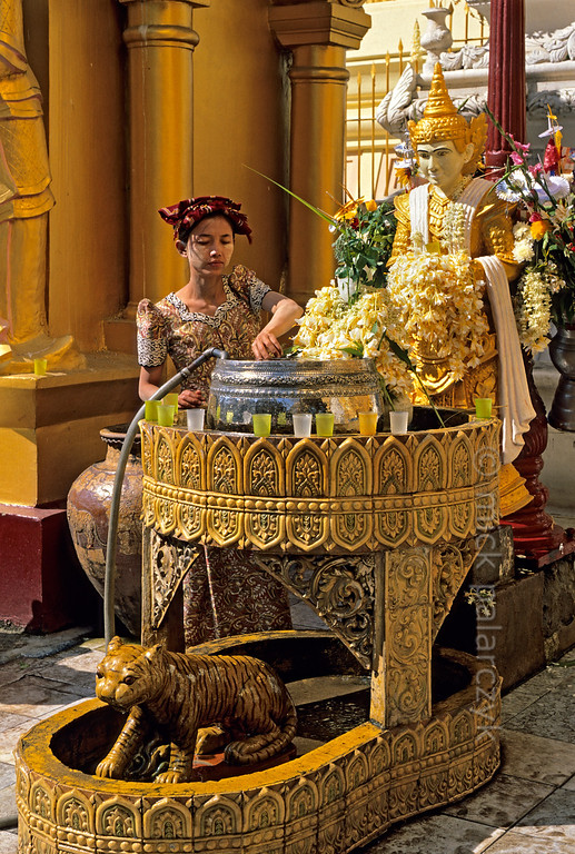[BURMA 24.689] 'Tiger statue.'  	At the 'planetary post' of the moon, a small shrine near the base of the central stupa of Yangon's Shwedagon Pagoda, a woman is scooping water from a silver bowl. She will pour the water on the tiger statue that is associated with the moon and monday, thus ritually washing it. Worshippers make offerings to planetary posts according to the day of the week they were born. To the right stands a sculpture of a nat (protective spirit). Photo Mick Palarczyk.