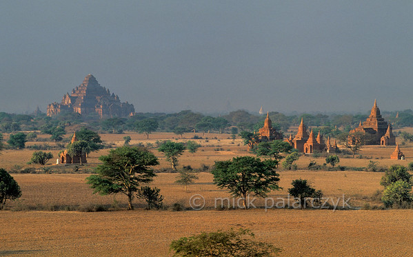[BURMA 24.878] 'Bagan plain seen from Bulethi Stupa.'  	The Bagan plain houses some two thousand temples and stupas. They are the 11th-13th century remnants of the now vanished royal city of Bagan. Here the plain is seen in the early morning from the Bulethi Stupa, looking south, with on the horizon the stepped Dhammayangyi temple. Photo Mick Palarczyk.