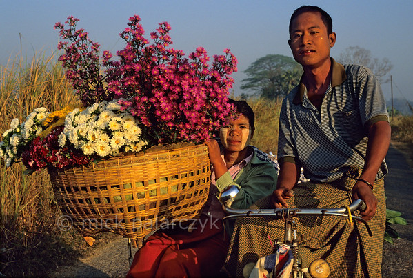 [BURMA 24.756] 'Trishaw.'  	North of Taungoo a woman is transporting flowers in a trishaw cab (bicycle with side-car). Photo Mick Palarczyk.