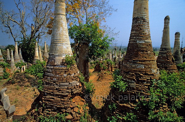 [BURMA 24.866] 'Ruined stupas.'  	At Indein, a village on the west shore of the Inle Lake, the Shwe Inn Thein Pagoda complex (founded in the 11th century) is for the greater part in a dilapidated state. Photo Mick Palarczyk.