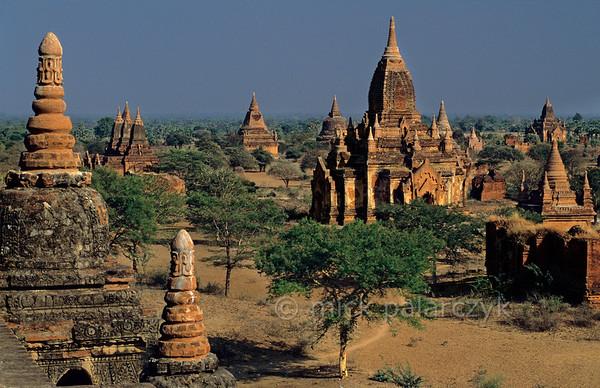 [BURMA 24.915] 'The Bagan plain at Minnanthu.'  The Bagan plain seen from Tayokpyi Temple at Minnanthu village. Photo Mick Palarczyk.