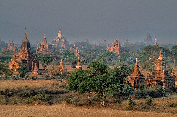 [BURMA 24.875] 'Bagan plain seen from Bulethi Stupa.'  	The Bagan plain houses some two thousand temples and stupas. They are the 11th-13th century remnants of the now vanished royal city of Bagan. Here the plain is seen in the early morning from the Bulethi Stupa, looking south-west, with on the horizon the white Shwesandaw Stupa. Photo Mick Palarczyk.