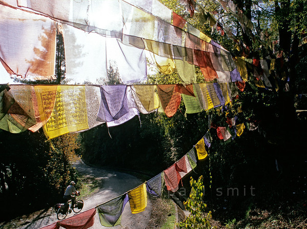 [NEPAL 27615] 'Prayer flags over the Tribhuwan Highway.'  	Between Daman and the Simbhanjyang Pass the Tribhuwan Rajpath (highway) snakes its way up past the Shri Rikheshwar Temple. The switchback near the temple passes under a multitude of prayer flags. Photo Paul Smit.