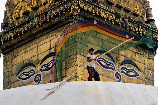 [NEPAL.KATHMANDUVALLEY 27205] 'Whitewashing Swayambhu stupa.'  Watched over by the all-seeing eyes of Adi-Buddha (primordial Buddha) a boy is whitewashing the central stupa of Swayambhu, at the western outskirts of Kathmandu. The eyes are attached to the gold gilded cube (harmika) that surmounts the stupa. Photo Mick Palarczyk.