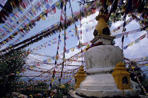 [NEPAL.KATHMANDUVALLEY 27245] 'Prayer flags at Manjushri Hill.'  	Near Swayambhu, west of Kathmandu, prayer flags are obscuring the sky over Manjushri Hill. Photo Mick Palarczyk.