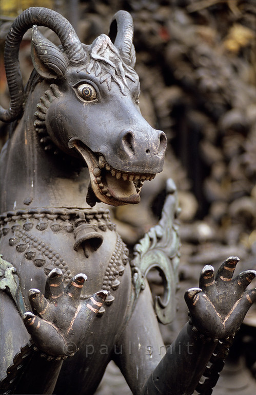 [NEPAL.KATHMANDUVALLEY 27352] 'Mythical animal in Patan'.  A mythical animal is portrayed in exquisite metalwork in Patan's now-defunct Buddhist monastery Uku Bahal, also called Rudravarna Mahabihar (Red Monastery). Photo Paul Smit.