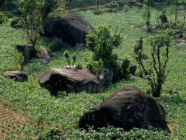 [NEPAL 27622] 'Landscape along the Tribhuwan Highway.'  Landscape along the Tribhuwan Rajpath (highway) south of the Simbhanjyang Pass. Photo Paul Smit.