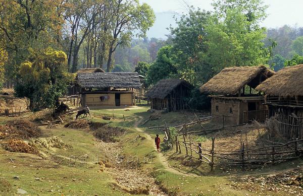 [NEPAL. 27593] 'Terai village in Rapti valley.'  Terai village in the valley of the Rapti east of Nepalganj. Photo Paul Smit.