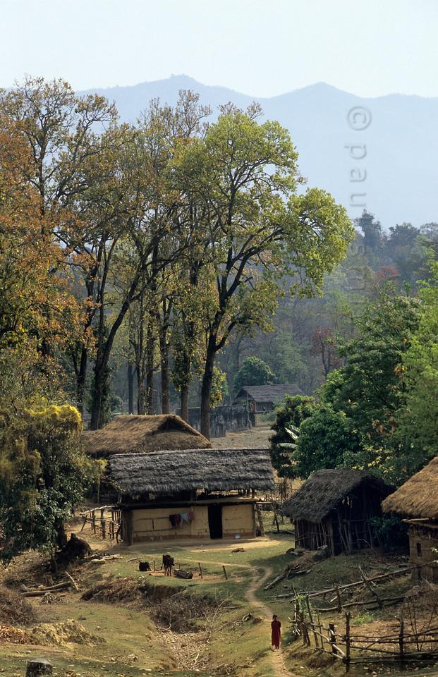 [NEPAL. 27596] 'Terai village in Rapti valley.'  Terai village in the valley of the Rapti east of Nepalganj. Photo Paul Smit.