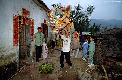 [CHINA.GUANGDONG 25.155] 'Picking the verdure.'  On the first day of the Chinese New Year a lion dance is performed at each house in Ren Heng village, west of Foshan. The dance is called 'picking the verdure' as the beast is offered some vegetables that will ensure riches during the coming year. Photo Mick Palarczyk.