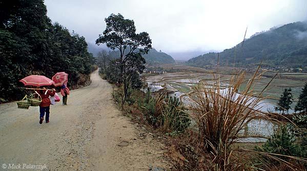 [CHINA.GUANGDONG 25.205] 'Terraced fields.' The road between Xiaosanjiang and Futang (north of Huaji) crosses terraced rice fields. Photo Mick Palarczyk.