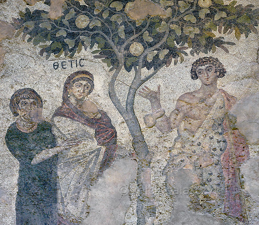 """[TURKEY.EAST 29296] 'Achilles' and Thetis in Byzantine mosaic in Urfa.'  A large mosaic in the ancient town of Edessa shows several scenes from the life of the Greek warrior Achilles. This detail shows Achilles (right) and his mother Thetis (center) under a fruit tree. The 5/6 th century floor mosaic can be found in the """"Villa of the Amazons"""", a palatial house, that probably belonged to an important administrator of the Eastern Roman (Byzantine) Empire, who lived in Edessa (nowadays called Urfa). The remains of the villa were discovered in 2006 near the center of Urfa. Photo Mick Palarczyk."""