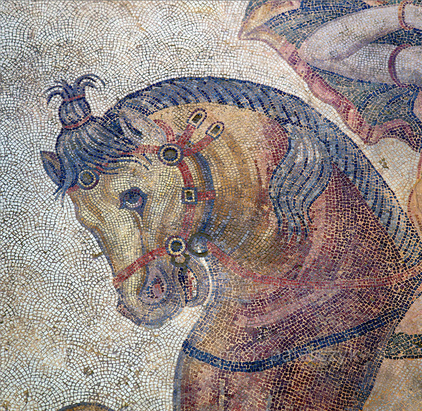 "[TURKEY.EAST 29282] 'Horse of Penthesilea in Byzantine mosaic in Urfa.'  	Tesserae (mosaic stones) made of rocks from the riverbed of the Euphrates are laid out in intricate patterns to depict a horse in a hunting scene with several animals and Amazons (warrior queens from Greek Mythology. This particular horse is carrying the Amazon Penthesilea. The 5/6 th century floor mosaic can be found in the ""Villa of the Amazons"", a palatial house, that probably belonged to an important administrator of the Eastern Roman (Byzantine) Empire, who lived in Edessa (nowadays called Urfa). The remains of the villa were discovered in 2006 near the center of Urfa, which is located 45 km south of the Euphrates. Photo Mick Palarczyk."
