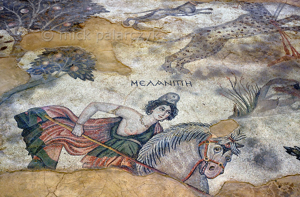 """[TURKEY.EAST 29271] 'Melanippe, Amazon in Byzantine mosaic in Urfa.'  Wearing a Phrygian cap and red robe, the Amazon Melanippe is thrusting her lance towards a lion (not in picture) in a mosaic floor that depicts a hunting scene. The warrior queen from Greek Mythology is typically represented with one breast, as the other one has been removed to prevent it getting in the way in battle. In the upper right corner a panther is stabbed in the neck by another Amazon. The 5/6 th century mosaic can be found in the """"Villa of the Amazons"""", a palatial house, that probably belonged to an important administrator of the Eastern Roman (Byzantine) Empire, who lived in Edessa (nowadays called Urfa). The remains of the villa were discovered in 2006 near the center of Urfa. Photo Mick Palarczyk."""