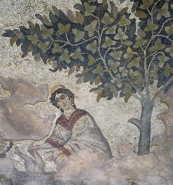 """[TURKEY.EAST 29293] 'Achilles' mother in Byzantine mosaic in Urfa.'  A large mosaic in the ancient town of Edessa shows several scenes from the life of the Greek warrior Achilles. This detail shows Thetis, the sea-goddess who was Achilles' mother, dipping the infant in a bowl of Styx water, making him invulnerable. Only the heel, by which she was holding him, was not touched by the sacred water and this will ensure Achilles' death when he is hit in the foot by a poisoned arrow during the Troyan War. The 5/6 th century floor mosaic can be found in the """"Villa of the Amazons"""", a palatial house, that probably belonged to an important administrator of the Eastern Roman (Byzantine) Empire, who lived in Edessa (nowadays called Urfa). The remains of the villa were discovered in 2006 near the center of Urfa. Photo Mick Palarczyk."""