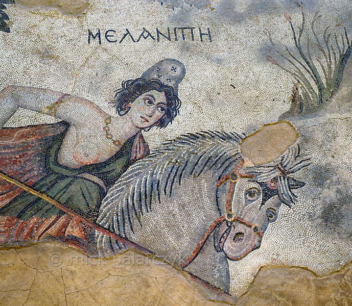 """[TURKEY.EAST 29273] 'Melanippe, Amazon in Byzantine mosaic in Urfa.'  Wearing a Phrygian cap and red robe, the Amazon Melanippe is thrusting her lance towards a lion (not in picture) in a mosaic floor that depicts a hunting scene. The warrior queen from Greek Mythology is typically represented with one breast, as the other one has been removed to prevent it getting in the way in battle. The 5/6 th century mosaic can be found in the """"Villa of the Amazons"""", a palatial house, that probably belonged to an important administrator of the Eastern Roman (Byzantine) Empire, who lived in Edessa (nowadays called Urfa). The remains of the villa were discovered in 2006 near the center of Urfa. Photo Mick Palarczyk."""