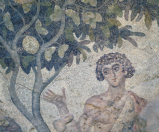 """[TURKEY.EAST 29297] 'Achilles' in Byzantine mosaic in Urfa.'  A large mosaic in the ancient town of Edessa shows several scenes from the life of the Greek warrior Achilles. This detail shows Achilles under a fruit tree. The 5/6 th century floor mosaic can be found in the """"Villa of the Amazons"""", a palatial house, that probably belonged to an important administrator of the Eastern Roman (Byzantine) Empire, who lived in Edessa (nowadays called Urfa). The remains of the villa were discovered in 2006 near the center of Urfa. Photo Mick Palarczyk."""