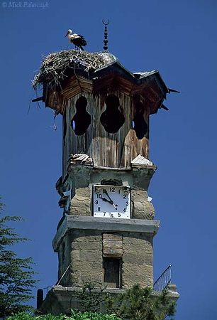 [TURKEY.CENTRAL 26971 'Belfry in Sungurlu.'  The belfry in Sungurlu, a town east of Ankara, is topped by a stork nest. Photo Mick Palarczyk.