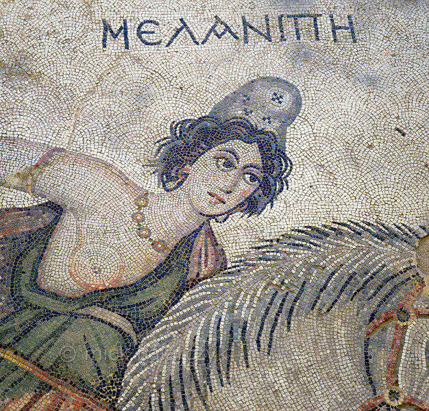 "[TURKEY.EAST 29274] 'Melanippe, Amazon in Byzantine mosaic in Urfa.'  	Wearing a Phrygian cap, the Amazon Melanippe is part of a large hunting scene with several animals and other Amazons. The warrior queen from Greek Mythology is typically represented with one breast, as the other one has been removed to prevent it getting in the way in battle. The 5/6 th century floor mosaic can be found in the ""Villa of the Amazons"", a palatial house, that probably belonged to an important administrator of the Eastern Roman (Byzantine) Empire, who lived in Edessa (nowadays called Urfa). The remains of the villa were discovered in 2006 near the center of Urfa. Photo Mick Palarczyk."