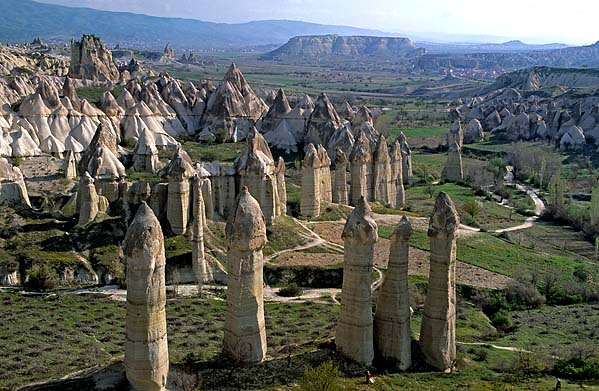 [TURKEY.CENTRAL 26819 'Fairy chimneys in White Valley-3.'  A forest of 'fairy chimneys' catches the early sunlight on a spring morning in the White (Baglidere) Valley, north of the Cappadocian village of Göreme. These huge pillars, called peribacalar in Turkish, are sculptured by erosion from soft volcanic tuff layers. They are topped by a cap of harder more solidified ash (ignimbrite). Photo Mick Palarczyk.