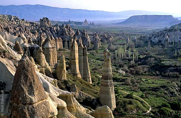 [TURKEY.CENTRAL 26816 'Fairy chimneys in White Valley-1.'  	A forest of 'fairy chimneys' catches the early sunlight on a spring morning in the White (Baglidere) Valley, north of the Cappadocian village of Göreme. These huge pillars, called peribacalar in Turkish, are sculptured by erosion from soft volcanic tuff layers. They are topped by a cap of harder more solidified ash (ignimbrite), one of which is visible in the left foreground. Photo Mick Palarczyk.