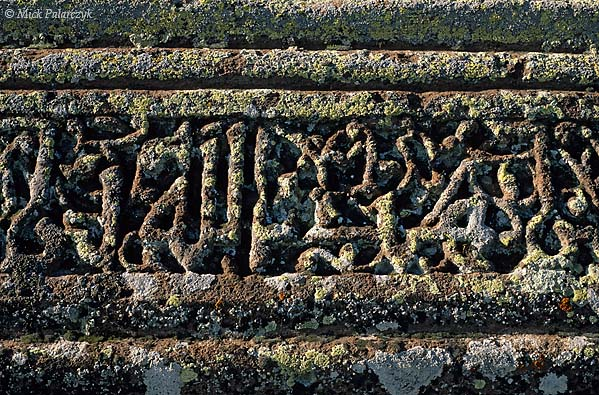 [TURKEY.EAST 27907] 'Lichen covered Kufic inscription-2.'  	An inscription in the Kufic alphabet has been overgrown with white and red lichens. The lettering can be found on a mid 12th century sarcophagus in the Seljuk cemetery of Ahlat, on the western shore of Lake Van. Photo Mick Palarczyk.