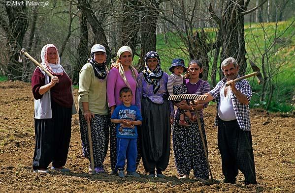 [TURKEY.EAST 27879] 'Farmer family in Taurus.'  In the Taurus mountain range near the village of Catalcam, west of Göksun, a family is tilling their field. Photo Mick Palarczyk.