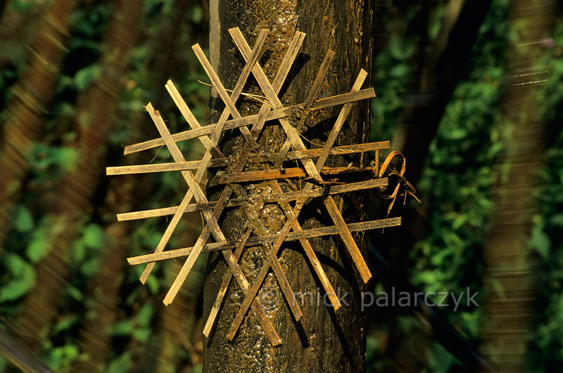 [VIETNAM.NORTH 21.313] 'Ritual decoration.'  A sun like ritual decoration on the stand of a an irrigation wheel in a tributary of the Nam La River, south of So'n La. (See previous images). Photo Mick Palarczyk.