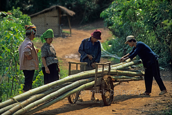 [VIETNAM.NORTH 21.316] 'Bamboo on a cart.'  On a country road southwest of So'n La freshly cut bamboo stems are piled upon a small hand cart. Photo Mick Palarczyk.