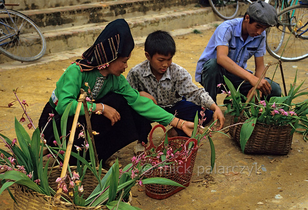 [VIETNAM.NORTH 21.352] 'Selling orchids.'  	On the market of Tuân Giáo a Black Thái woman and her son are selling orchids. Photo Mick Palarczyk.