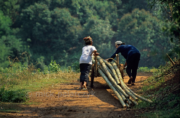 [VIETNAM.NORTH 21.315] 'Bamboo transport.'  	On a country road southwest of So'n La this couple is transporting freshly cut bamboo stems. Photo Mick Palarczyk.