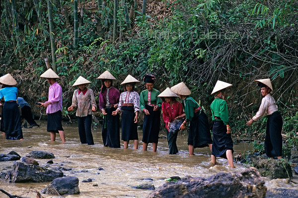 [VIETNAM.NORTH 21.297] 'Handing down boulders.'  	Black Thái tribes women hand down river boulders which are used to build a dam for an irrigation wheel in a tributary of the Nam La River, south of So'n La.. (See image 21.293). Photo Mick Palarczyk.