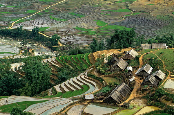 [VIETNAM.NORTH 21.469] 'Village in Muong Hoa Valley.'  	Village in the terraced landscape of the Muong Hoa Valley east of Sapa. Photo Mick Palarczyk