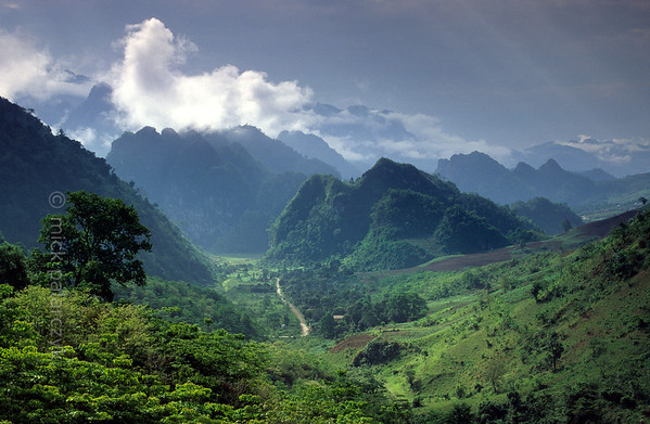 [VIETNAM.NORTH 21.354] 'Coned landscape.'  	The landscape with wooded cones south of Lai Châu is the result of tropical karst: limestone dissolving and eroding by rainwater. Photo Mick Palarczyk.