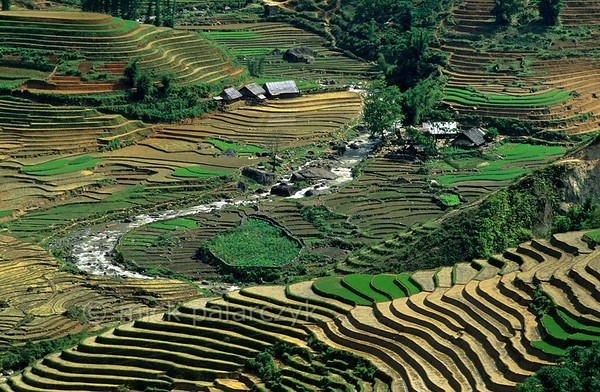 [VIETNAM.NORTH 21.477] 'Muong Hoa River.'  	East of Sapa the Muong Hoa River winds through a landscape of terraced rice fields. Photo Mick Palarczyk