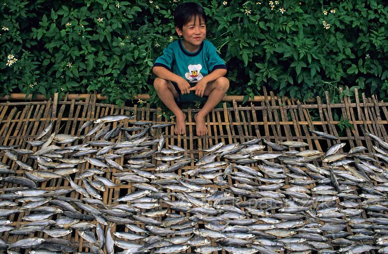 [VIETNAM.NORTH 21.558]