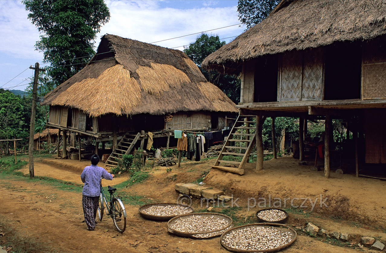 [VIETNAM.NORTH 21.273] 'Stilted houses in Mai Châu.'  A street in the village of Mai Châu is lined with the stilted houses of the White Thái mountain tribe. Photo Mick Palarczyk.