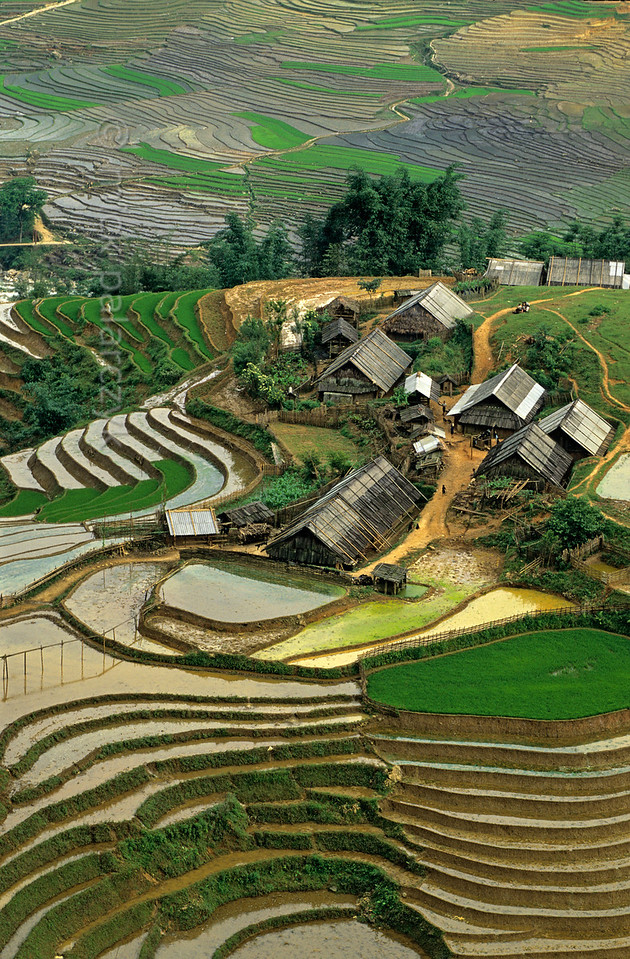 [VIETNAM.NORTH 21.463]