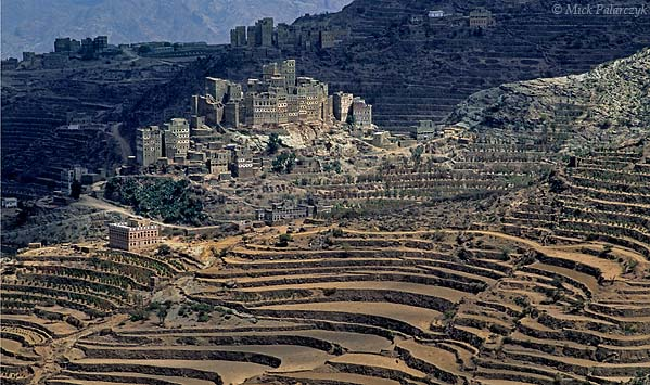 [YEMEN.NORTH 26342] 'Green village.'  The greenish stones of Sherege village create a nice colour contrast with the ochre terraced fields of the Jebel Haras mountains. Photo Mick Palarczyk.