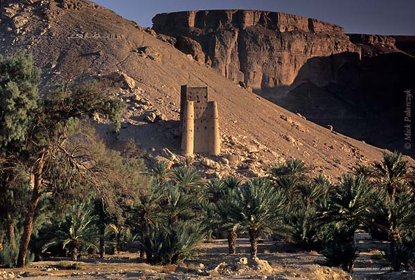 [YEMEN.SOUTH 26590] 'Tower near Shibam.'  	In the Wadi Hadhramawt west of Shibam a fortress-like loam tower watches over a plain with palm groves. In the background looms the southern escarpment of the wadi. Photo Mick Palarczyk.